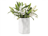 Wrinkle Square Vase Accessories in Miami